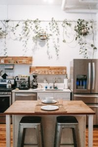 The white walls in this kitchen are perfect for making the plants hanging along the wall pop.
